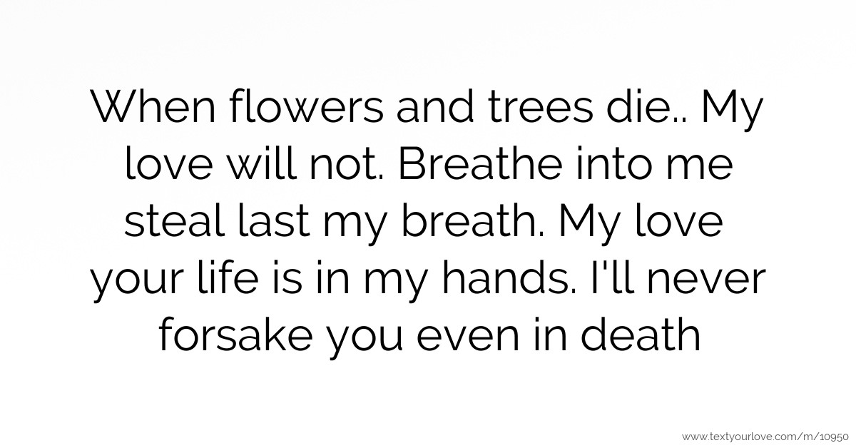 When Flowers And Trees Die.. My Love Will Not. Breathe