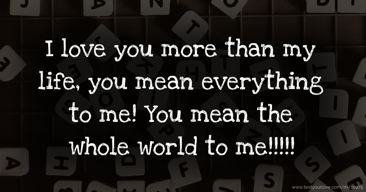 I Love You More Than My Life You Mean Everything To Text