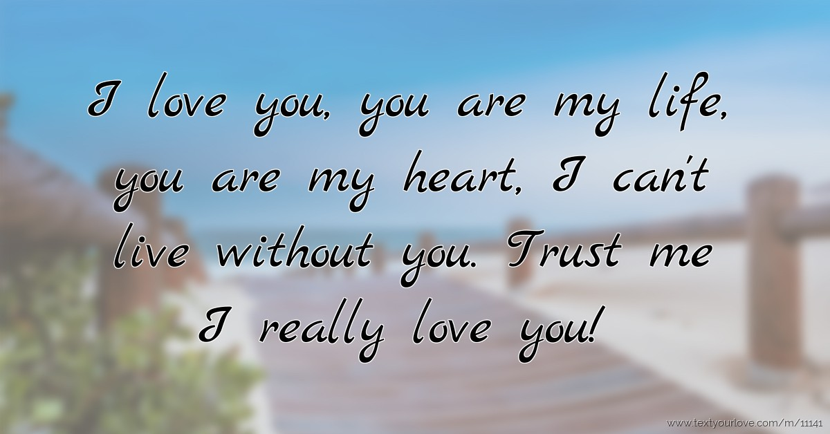 I Love You You Are My Life You Are My Heart I Cant Text