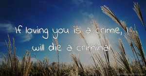 If loving you is a crime, I will die a criminal