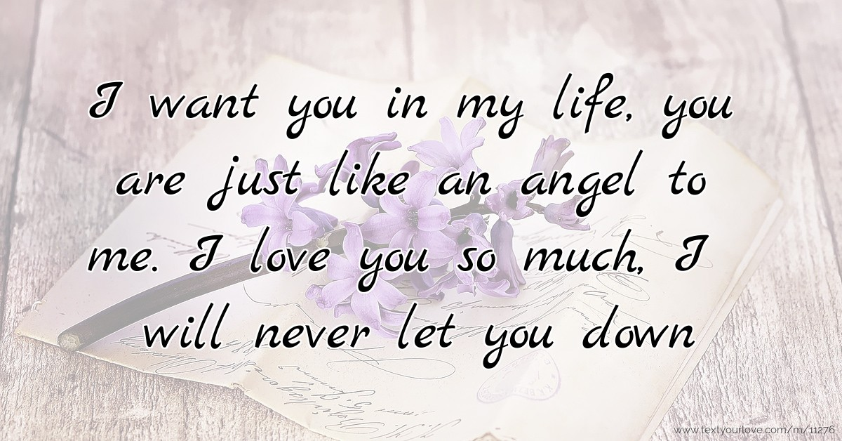 I Want You In My Life You Are Just Like An Angel To Me
