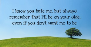 I know you hate me, but always remember that I'll be on your side, even if you don't want me to be.