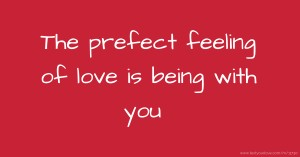 The prefect feeling of love is being with you.