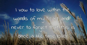 I vow to love within the words of my heart and never to forget that this is once a life time lover