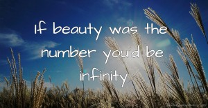 If beauty was the number you'd be infinity