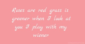 Roses are red grass is greener when I look at you I play with my wiener
