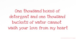 One thousand boxes of detergent and one thousand buckets of water cannot wash your love from my heart