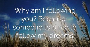 Why am I following you? Because someone told me to follow my dreams.