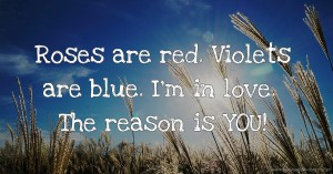 Roses are red.  Violets are blue.  I'm in love.  The reason is YOU!