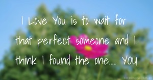 I Love You is to wait for that perfect someone and I think I found the one..... YOU