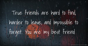 True friends are hard to find, harder to leave, and impossible to forget. You are my best friend.