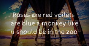 Roses are red voilets are blue a monkey like u should be in the zoo