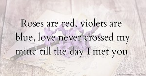 Roses are red, violets are blue, love never crossed my mind till the day I met you.
