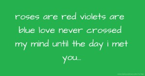 roses are red violets are blue love never crossed my mind until the day i met you...