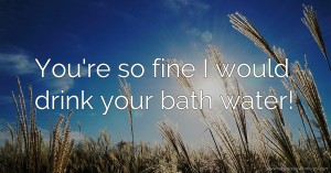 You're so fine I would drink your bath water!