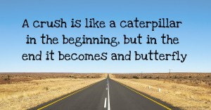 A crush is like a caterpillar in the beginning, but in the end it becomes and butterfly