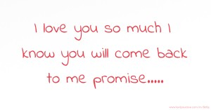 I love you so much I know you will come back to me promise.....