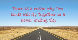 There is a reson why two birds will fly together in a never ending sky
