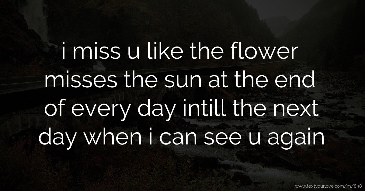 i miss u like the flower misses the sun at the end of every day intill