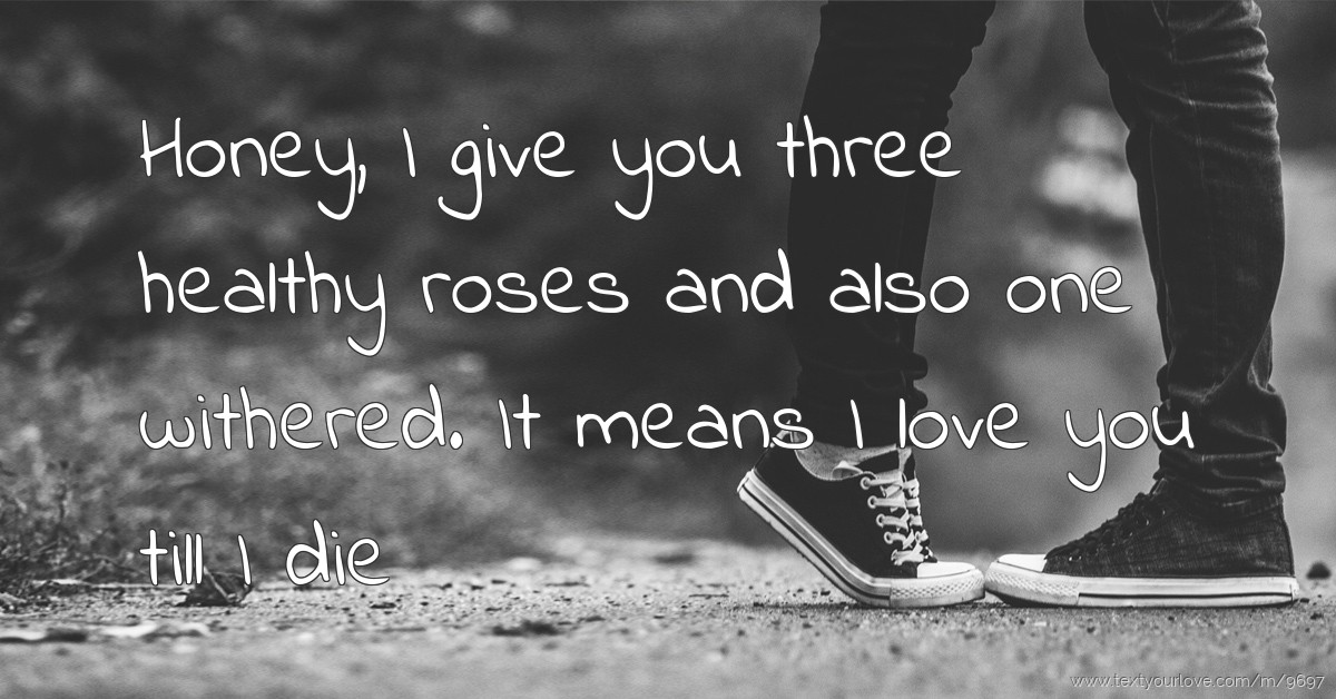 I Love You Till Funny Quotes : Honey, I give you three healthy roses and also one... Text Message ...